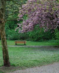 bank-im-park © flickr /angerman