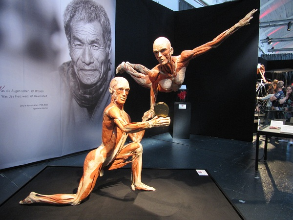 Platinate als Turner Körperwelten Ausstellung © friedrichshainblog.de