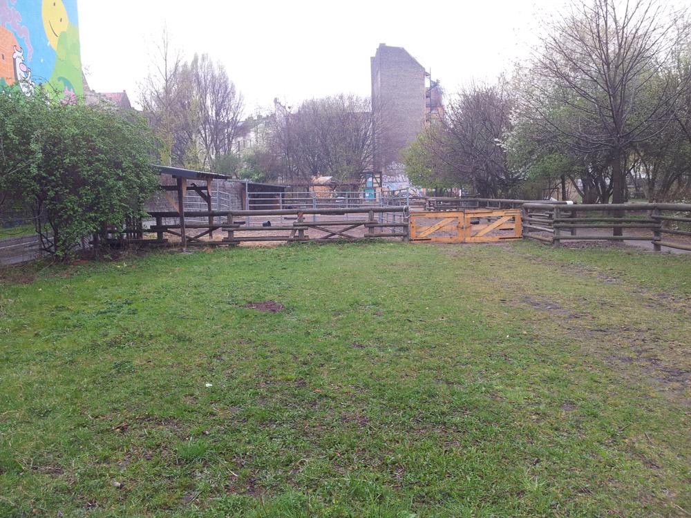 Stallungen des kinderbauernhofs am mauerplatz berlin kreuzberg