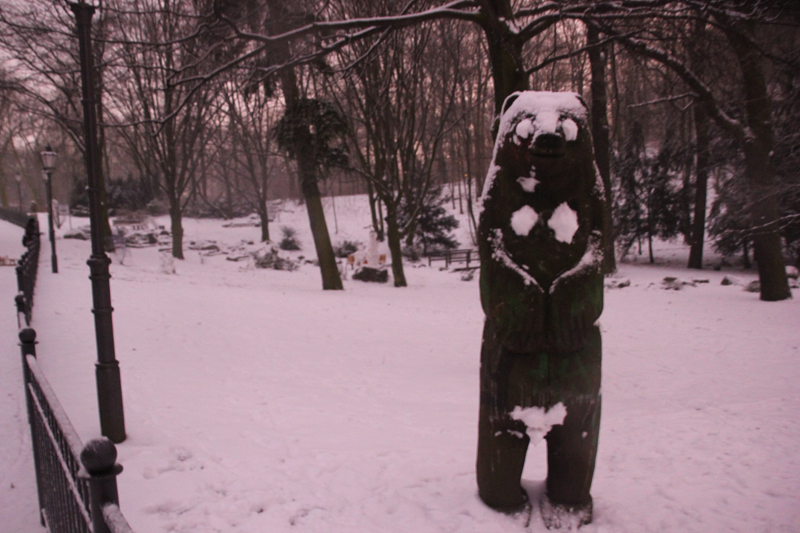 Berliner Bär im WInter