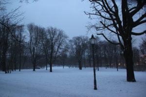 Volkspark Friedrichshain Winterwiese