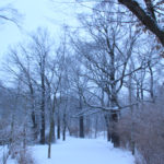 Volkspark Friedrichshain im Winter