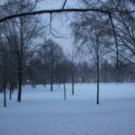 Wiese im Volkspark Friedrichshain