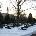 Gräber Friedhof Friedrichshain