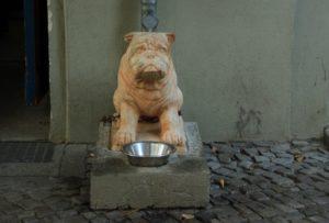 Steinerner Hund