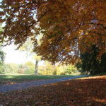 09 Herbststimmung Viktoriapark Kreuzberg