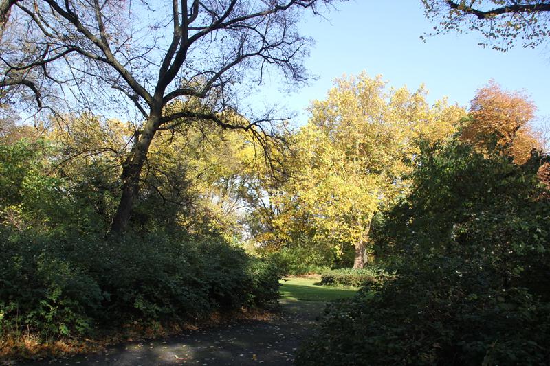 10 Liegewiese Viktoriapark