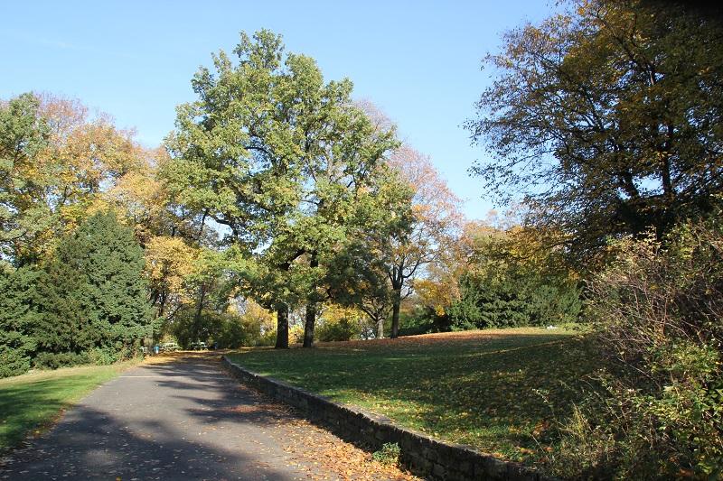 14 Viktoriapark Kreuzberg