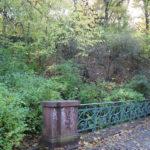 15 Brücken im Viktoriapark