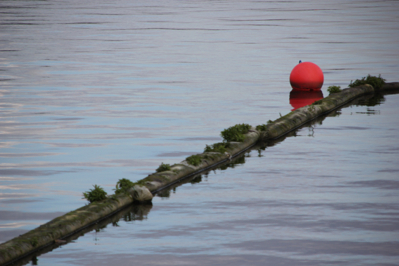 Boje im Wasser