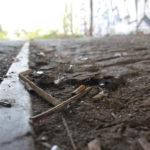 Zigarettenstummel am Boden