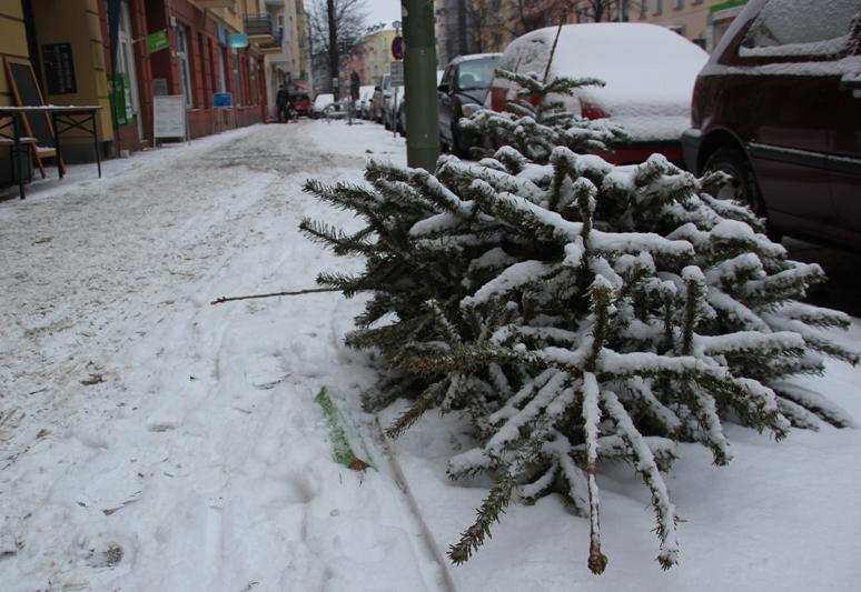 Weihnachtsbaum auf Gehweg