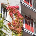Herbst Seniorenheim Liebigstrasse