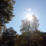 Traveplatz Goldener Oktober