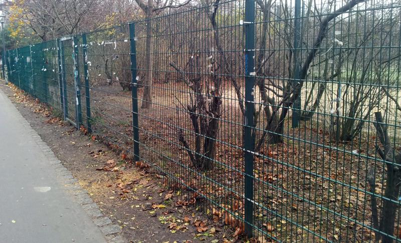 Görlitzer Park kahl