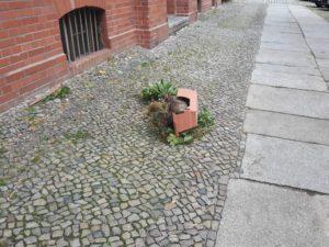 Blumenkasten verwindet