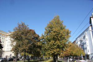 Oktober Friedrichshain