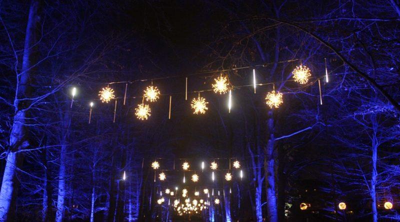 Christmas Garden Berlin Eingang