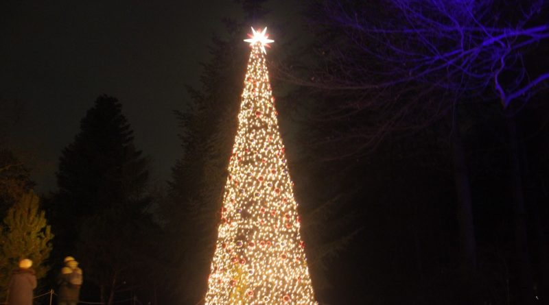 Christmas Garden Berlin Weihnachtsbaum