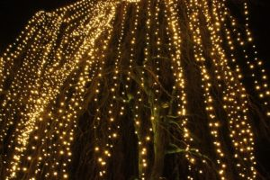 Christmas Garden Berlin baumkette unten