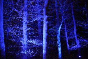 Christmas Garden Berlin blauer Wald