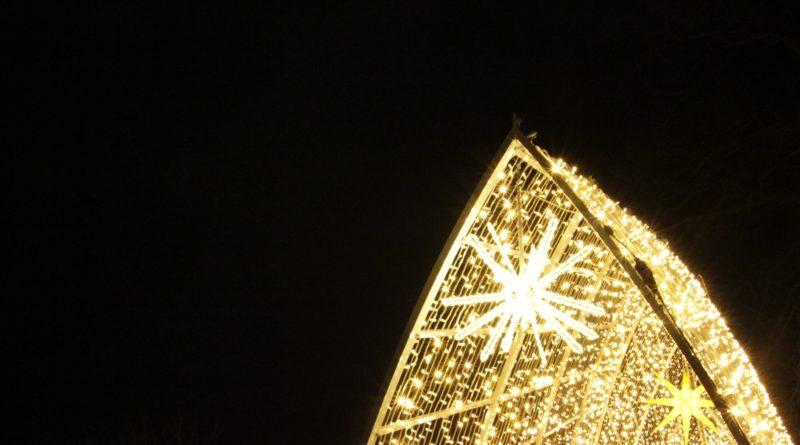 Christmas Garden Berlin gold stern
