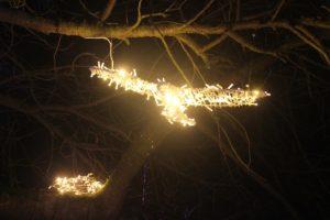 Christmas Garden Berlin leuchtender Vogel