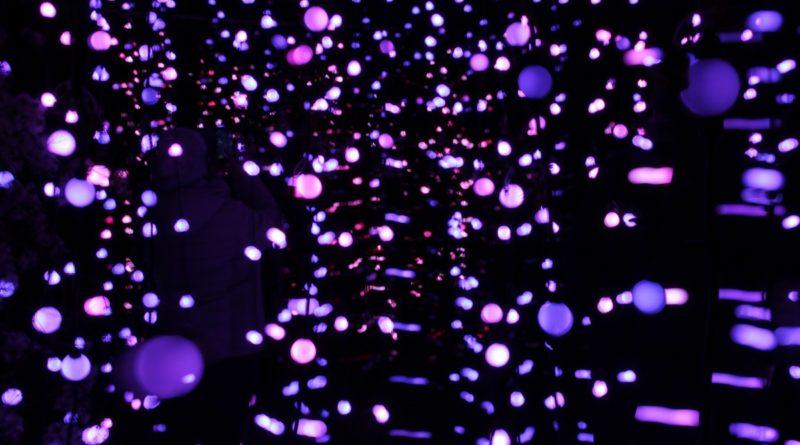 Christmas Garden Berlin lichterketten drin