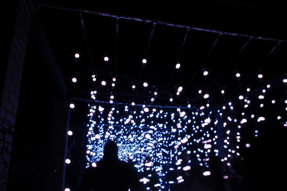 Christmas Garden Berlin lichterketten dunkel