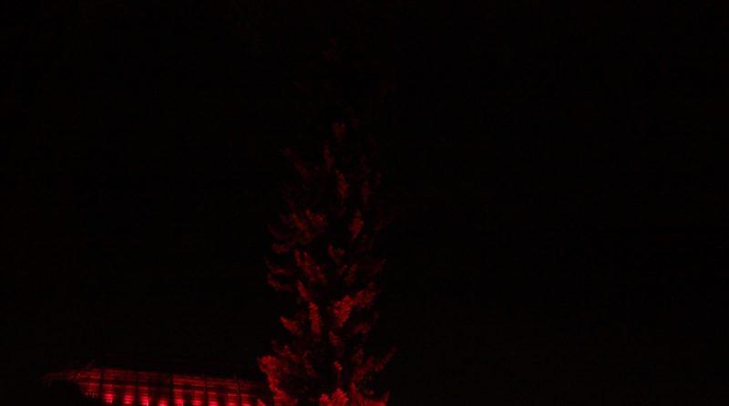 Christmas Garden Berlin Rote bäume